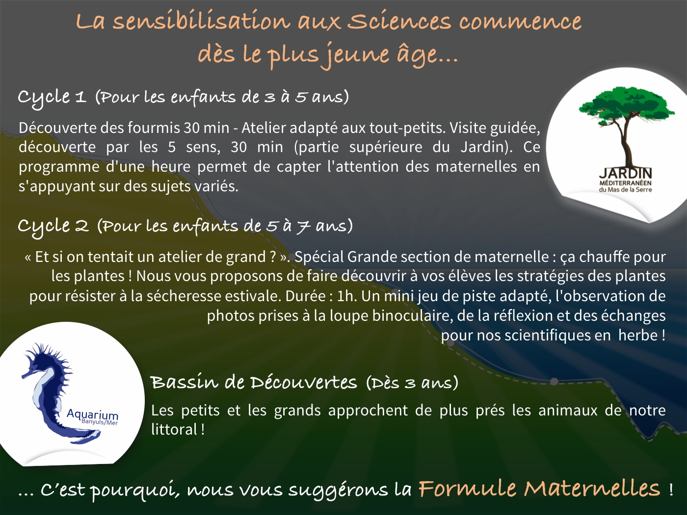Animations Maternelle 2017